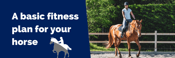 A basic fitness plan for your horse