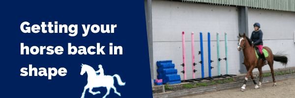 Getting your horse back in shape