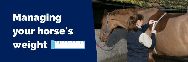 Managing your horses weight