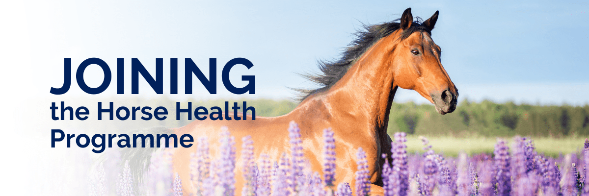 Joining the horse health programme